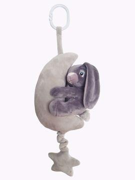 My newborn Bunny grå